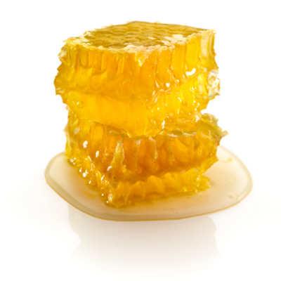 Honigwabe mit Honig