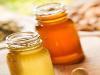 honigsorten-sortenhonig